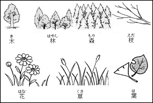 Japanese Nature Words
