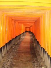 Learn Japanese Adventure