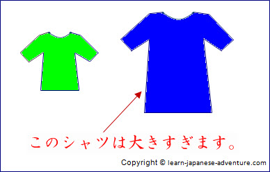 すぎる sugiru - Too Much in Japanese