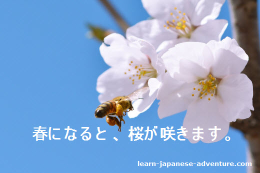 Japanese Conditional Form: と sentence