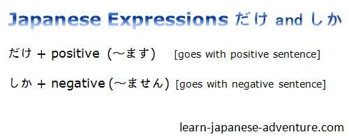 Japanese Expressions dake and shika