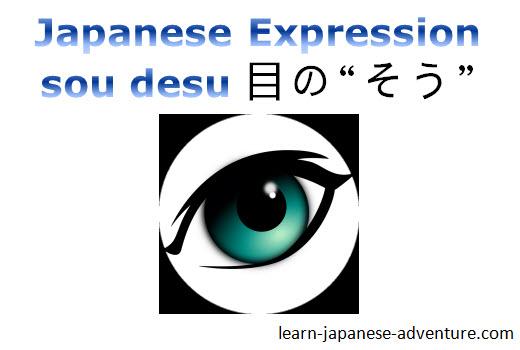 Japanese expression me no sou desu