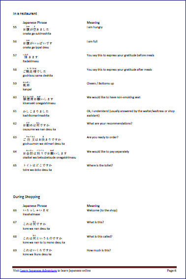 100+ Common and Useful Japanese Phrases eBook snapshot